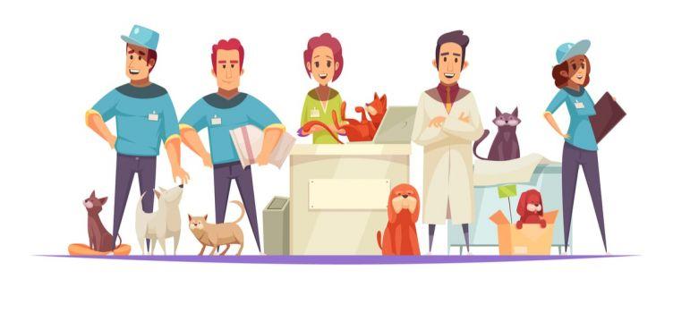 10 Best Pet Franchises Of 2020 What Franchise